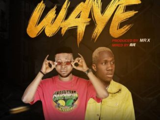 Mr Teezoh x Mr Bee – Waye