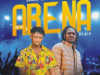 Small Baddo ft. Idowest – For My Arena Remix