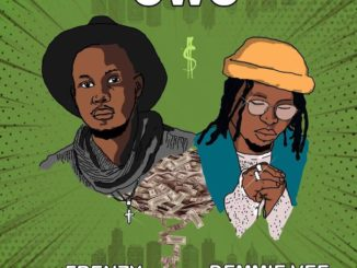 Frenzy ft. Demmie Vee – Owo