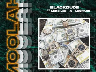Blackdude – Moolah ft. Leke Lee Leopard