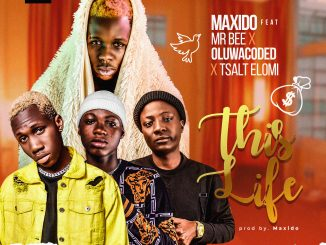 Maxido ft. Mr Bee x Oluwacoded x Tsalt Elomi – This Life
