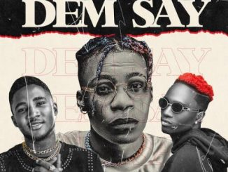 NatureBoii ft. Ayanfe Viral x MartinsFeelz – Dem Say