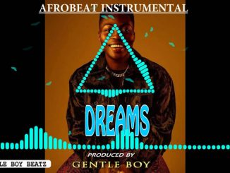 Gentle Boy – Reekado Banks x Mr Flavour Type Beat Inst