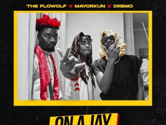 The Flowolf ft. Mayorkun x Dremo – On A Jay