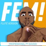 Professional ft. Davido – FEM! (Flute Version Instrumental)