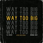 DJ Kush ft. Burna Boy – Way too Big (Afro EDM Remix)