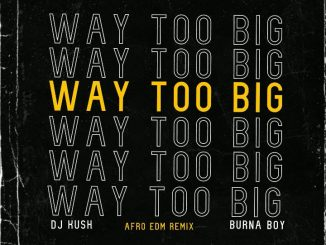 DJ Kush ft. Burna Boy – Way too Big Afro EDM Remix