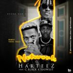 Harteez ft. C Blvck & Idowest – Network