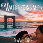 Blaqboy Milli – Wait For Me