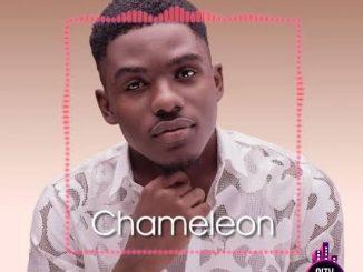 Dammy Isaac — Chameleon