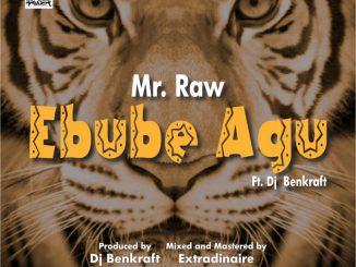 Mr Raw – Ebube Agu