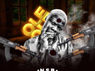 NSB — Ole