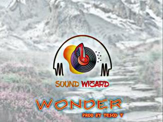 Tesco T DE Sound Wizard — Wonder Instrumental