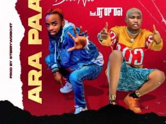 Babanee ft. DJ OP Dot — Ara Paa