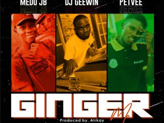 DJ Geewin ft. Medo JB x Petvee — Ginger Me Prod. Airkay