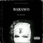 DJ Kush ft. Ajebo Hustler & Davido — Barawo (Amapiano Remix)