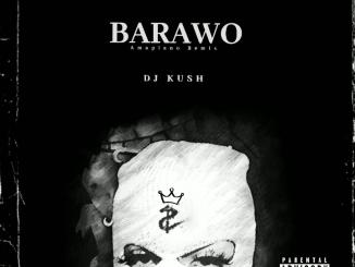 DJ Kush ft. Ajebo Hustler Davido — Barawo Amapiano