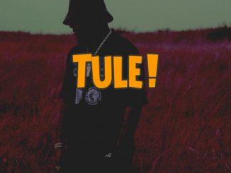 DJ Kush ft. Davido — Tule