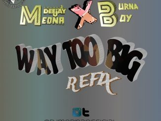 DJ Medna x Burna Boy – Way Too Big Refix