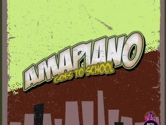 Download De PartyAnimals — Amapaino Goes To School Comp