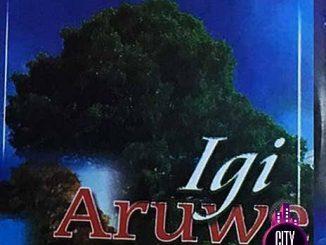 Femi Fadeyi — Igi Aruwe Soundtrack