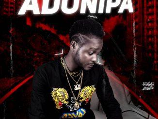 Professional Beat — Adonipa