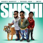 Buddie Bangest – Shi Shi ft. Emtee Chinko Ekun