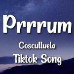 Cosculluela — Prrrum Tiktok Song