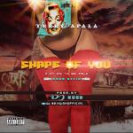 DJ Kush ft. Terry Apala — Shape of You Kush Afro Remix