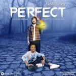 Destiny Boy ft. Ed Sheeran – Perfect Cover
