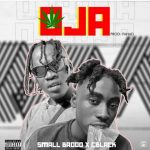 Small Baddo ft. C Blvck — OJA