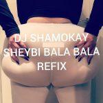 DJ Shamokay — Sheydi Bala Bala (Refix)