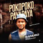 Banuso x Professional Beat — Pokopoko Payapaya (Instrumental)