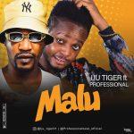 Iju Tiger ft. Professional Beats — Malu (Instrumental)