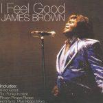 James Brown — I Got You I Feel Good