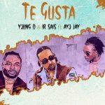 Young D Ir Sais Ayo Jay — Te Gusta