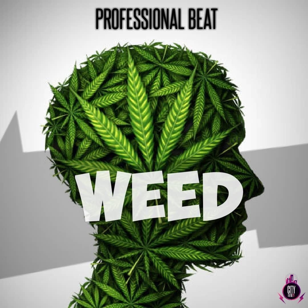 Professional Beat — Weed Instrumental