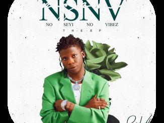 Seyi Vibez — N.S.N.V EP Ads